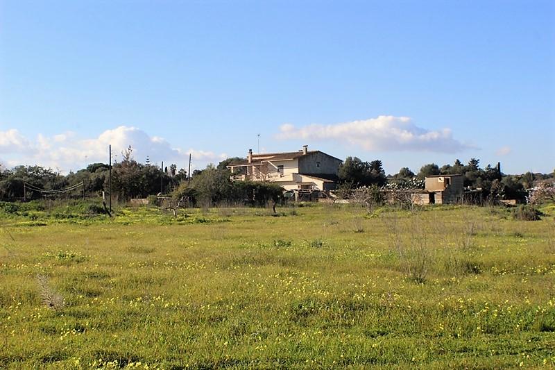 Finca Rural mit viel Potenzial und Riesengrundstück bei Porto Cristo, Mallorca